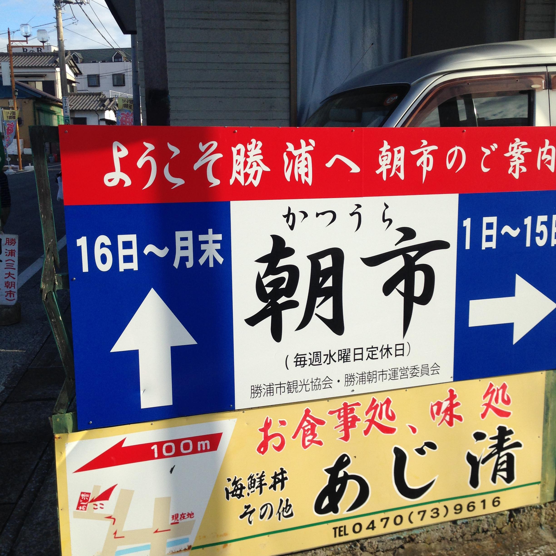 勝浦 市 観光 協会